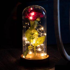 Enchanted Rose Flower Lamp