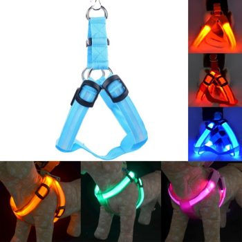 LED Dog Safety Harness