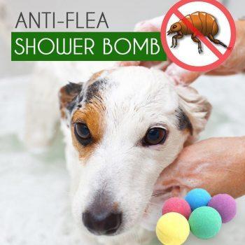 Anti-Flea Shower Bomb (Pack of 3)