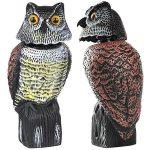 Shaking Head Owl