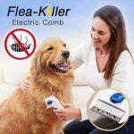 Flea-Killer Electric Comb