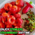 1-SEC Strawberry Stem Remover