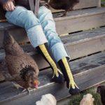 Funny Chicken Feet Socks Unisex