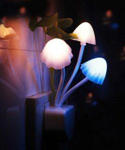 Lucky Mushroom Night Light